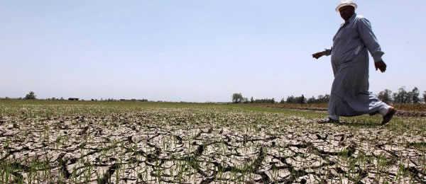 Засуха в Намибии