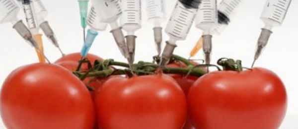 ГМО-продукты